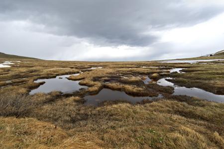 Colorado tundra. Credit - iStock Photo